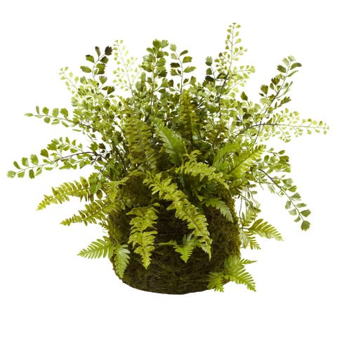 Mixed Fern with Twig and Moss Basket