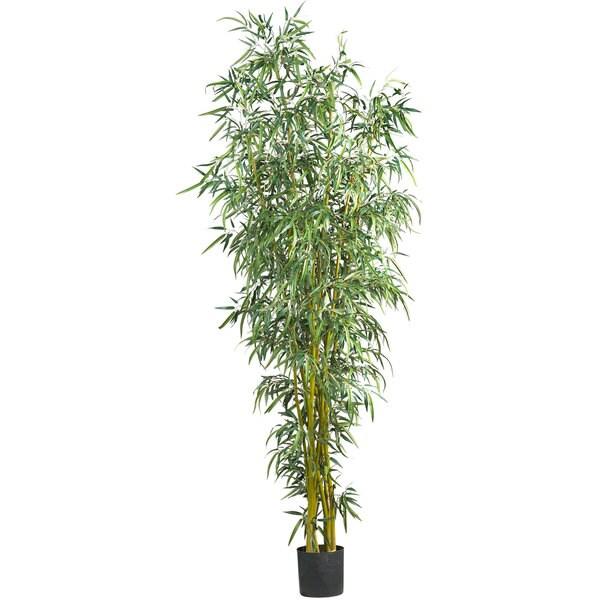 8-inch Fancy Style Bamboo Silk Tree. Opens flyout.