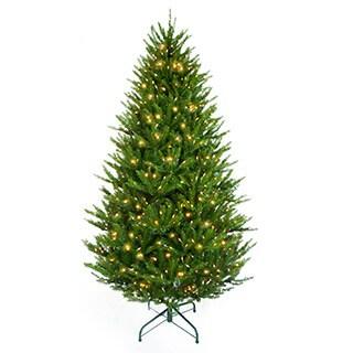 6-foot 6-inch Pre-lit Boston Spruce