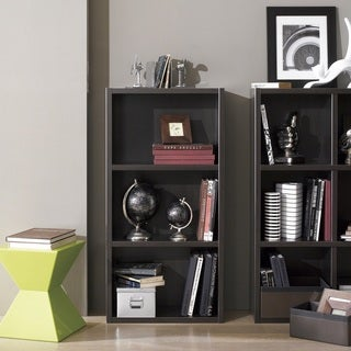 Techny Collection Hartley Bookcase