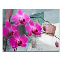 Ready2HangArt 'Painted Petals XIII' Canvas Wall Art