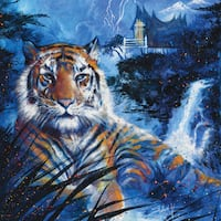 Stephen Fishwick 'Sum Tiger' Gallery-wrapped Canvas Print