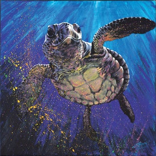 Stephen Fishwick 'Kemp's Ridley' Gallery-wrapped Canvas Print