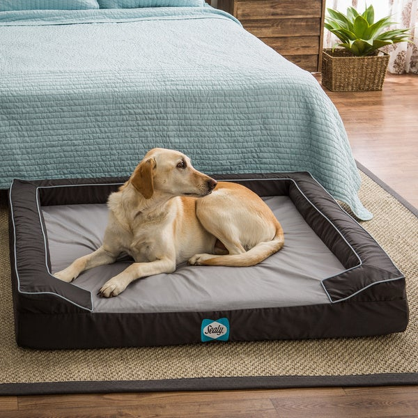 Sealy Lux Extra Large Memory Foam Pet Bed