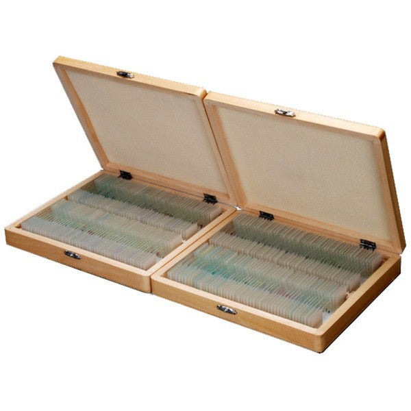 200 Anatomy Pathology Botany Prepared Microscope Slides