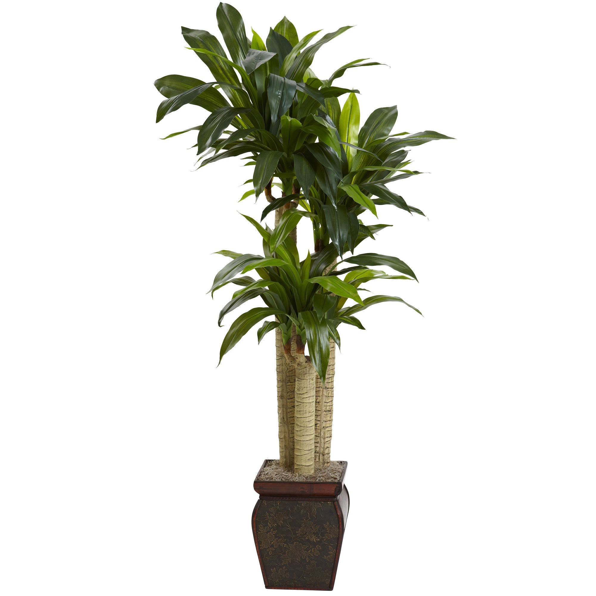 Nearly Natural Real Touch Cornstalk Draceana with Vase