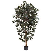 Nearly Natural Capensia Ficus Tree