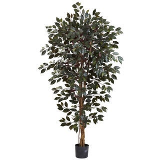 Nearly Natural Capensia Ficus Tree