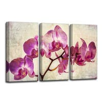 Ready2HangArt 'Painted Petals XVIII' Canvas Wall Art