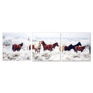 Porthos Home PL Home 'Horses in Winter' 3-piece Split-canvas Print