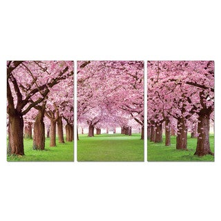 Porthos Home PL Home 'Blooming Cherry Blossoms' 3-piece Split-canvas Print