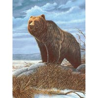 "Junior Small Paint By Number Kit 8.75""X11.75""-Grizzly Bear"