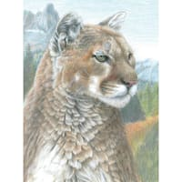 """Color Pencil By Number Kit 8.75""""X11.75""""-Cougar"""