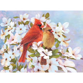 "Color Pencil By Number Kit 8.75""X11.75""-Cardinals"