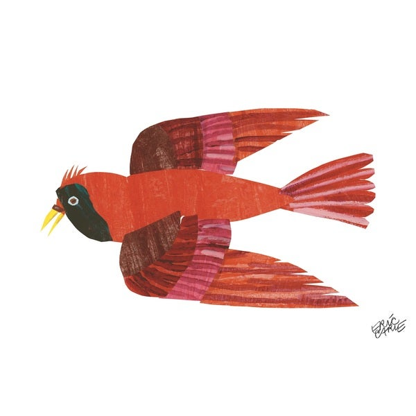 Brown Bear Red Bird Character Art By Eric Carle Multi