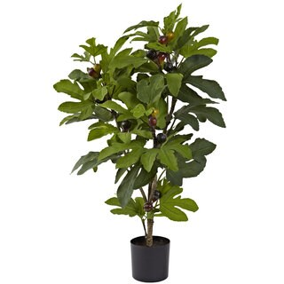 32-inch Silk Fig Tree