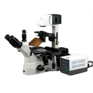 AmScope 1500X Phase Contrast Inverted Fluorescence Microscope with 1.4MP B/W Cam