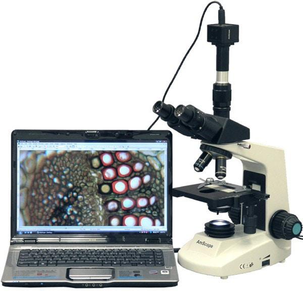 AmScope 8MP Digital Camera 40x-2000x Simul-focal Compound Microscope