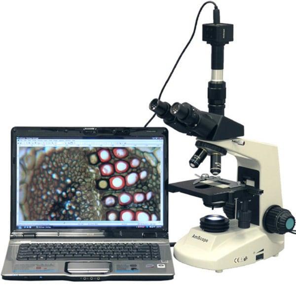 AmScope 10MP Digital Camera 40x-2000x Full Size Compound Microscope