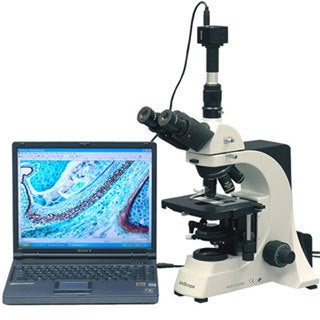 40x-1500x Professional Laboratory Biological Microscope with 5MP Camera