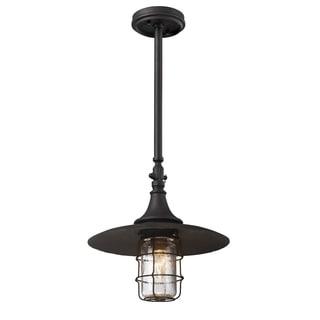 Troy Lighting Allegany 1-light Outdoor Hanging Lantern
