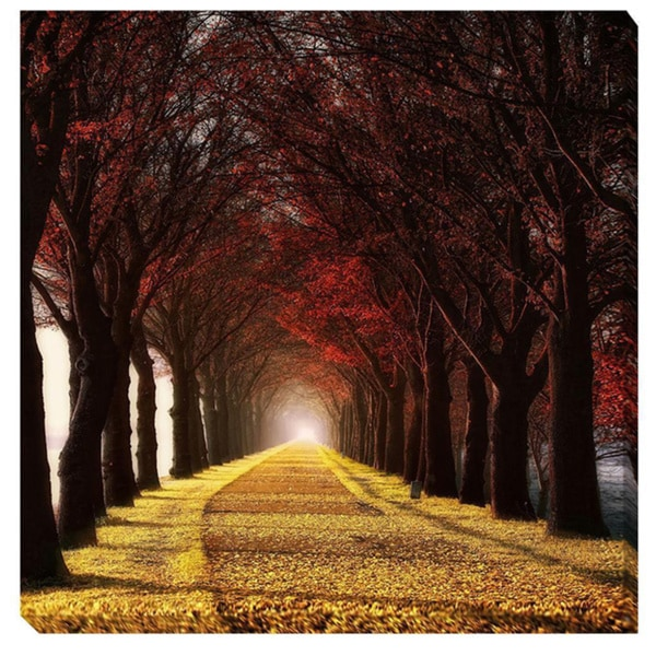 Shop Lars Van De Goor 'Wonder Curve' Canvas Giclee Art