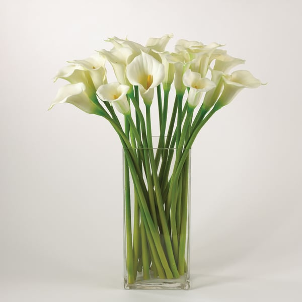 Shop Calla Lily Set Of 12 On Sale Free Shipping Today