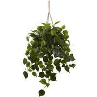 Philodendron Hanging Basket UV Resistant (Indoor/ Outdoor)