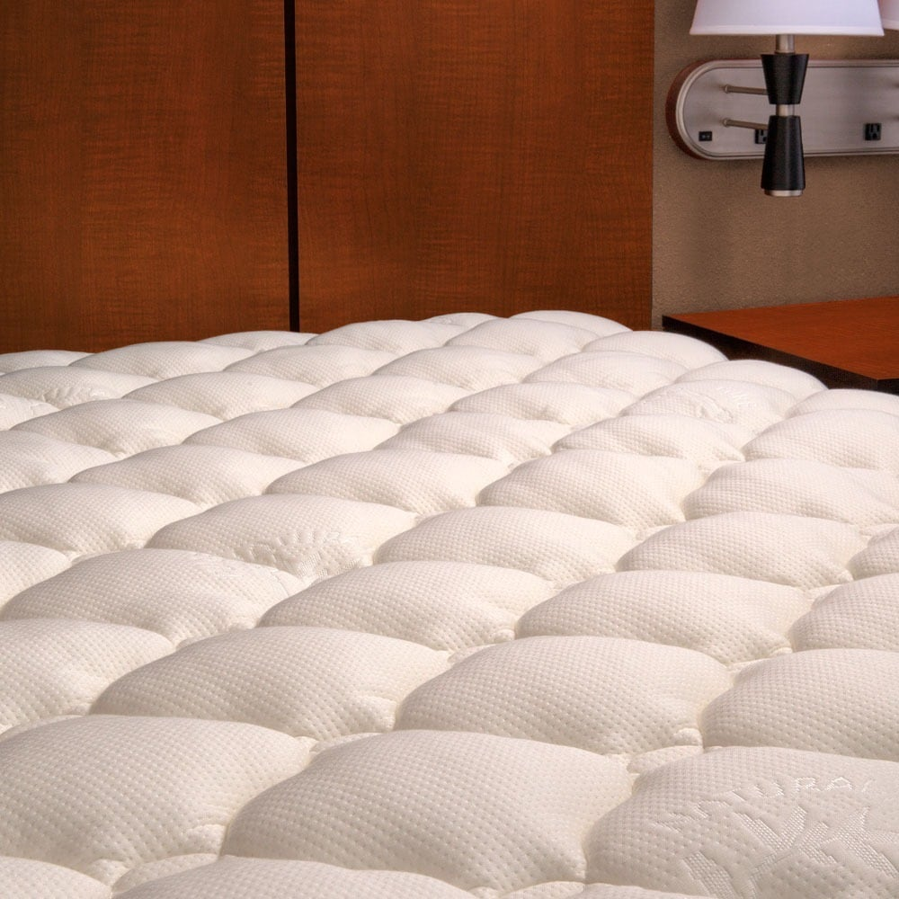 Extra-plush Rayon from Bamboo (Green) Top Mattress Pad Qu...