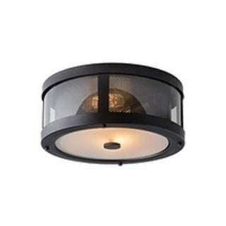 Bluffton Oil Rubbed Bronze 2-light Flush Mount Fixture