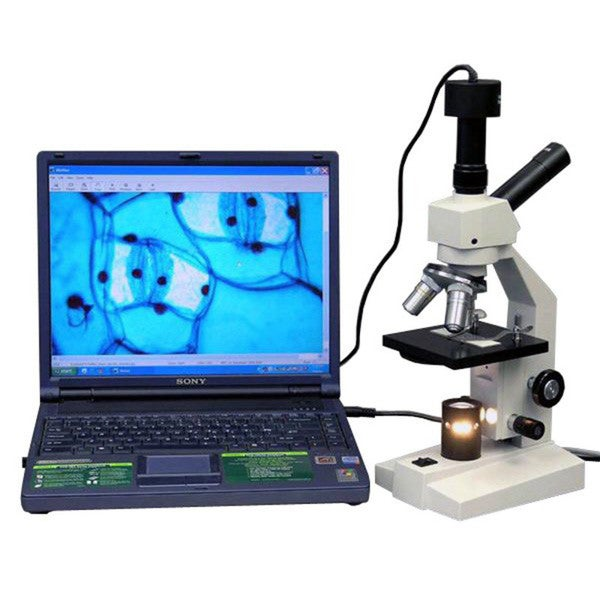 AmScope Dual-view Compound Microscope with Digital Camera