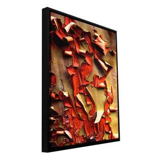 ArtWall Dean Uhlinger 'Madrone Bark Detail' Floater Framed Gallery-wrapped Canvas