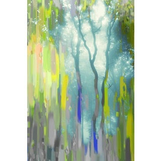 Parvez Taj 'Painted Tree Forest' Canvas Art