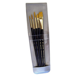 Princeton Real Value Series 9000 Blue Handled Brush Sets