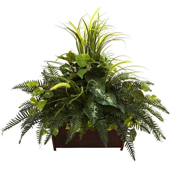 Mixed Grass and River Fern in a Wood Planter