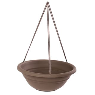 Bloem 17-inch Milano Curated Hanging Basket