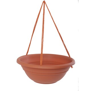 Bloem 17-inch Milano Terra Cotta Hanging Basket