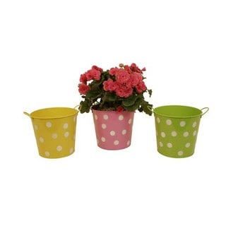 Wald Imports Assorted 7-inch Metal Polka Dot Container (Set of 3)