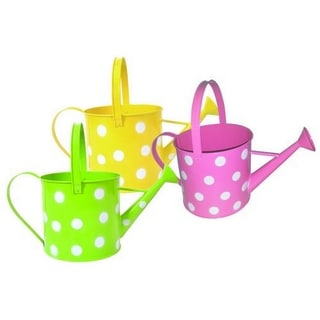 Wald Imports Assorted 7-inch Pastel/ Dots Watering Can (Set of 3)