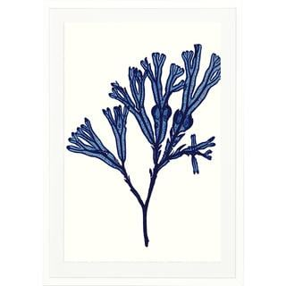 Framed Vivid Seaweed Art Print