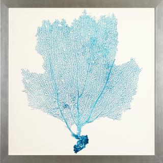 Framed 'Sea Fans' Art Print