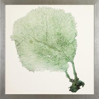 Sea Fans Framed Art Print
