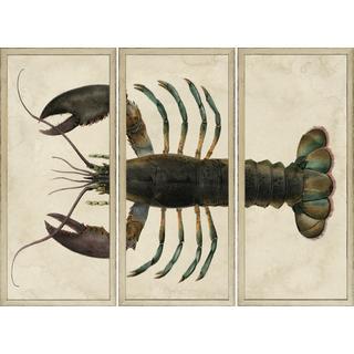 Lobster - Sectioned Framed Art Print