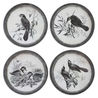 Uttermost 'Birds In Nature' Framed Print Art (Set of 4)