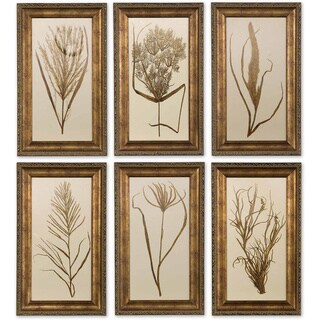 Uttermost Framed Wheat Grass (Set of 6)