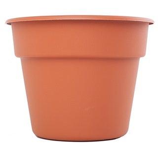 Link to Bloem Terra Cotta Dura Cotta Planter Similar Items in Gardening