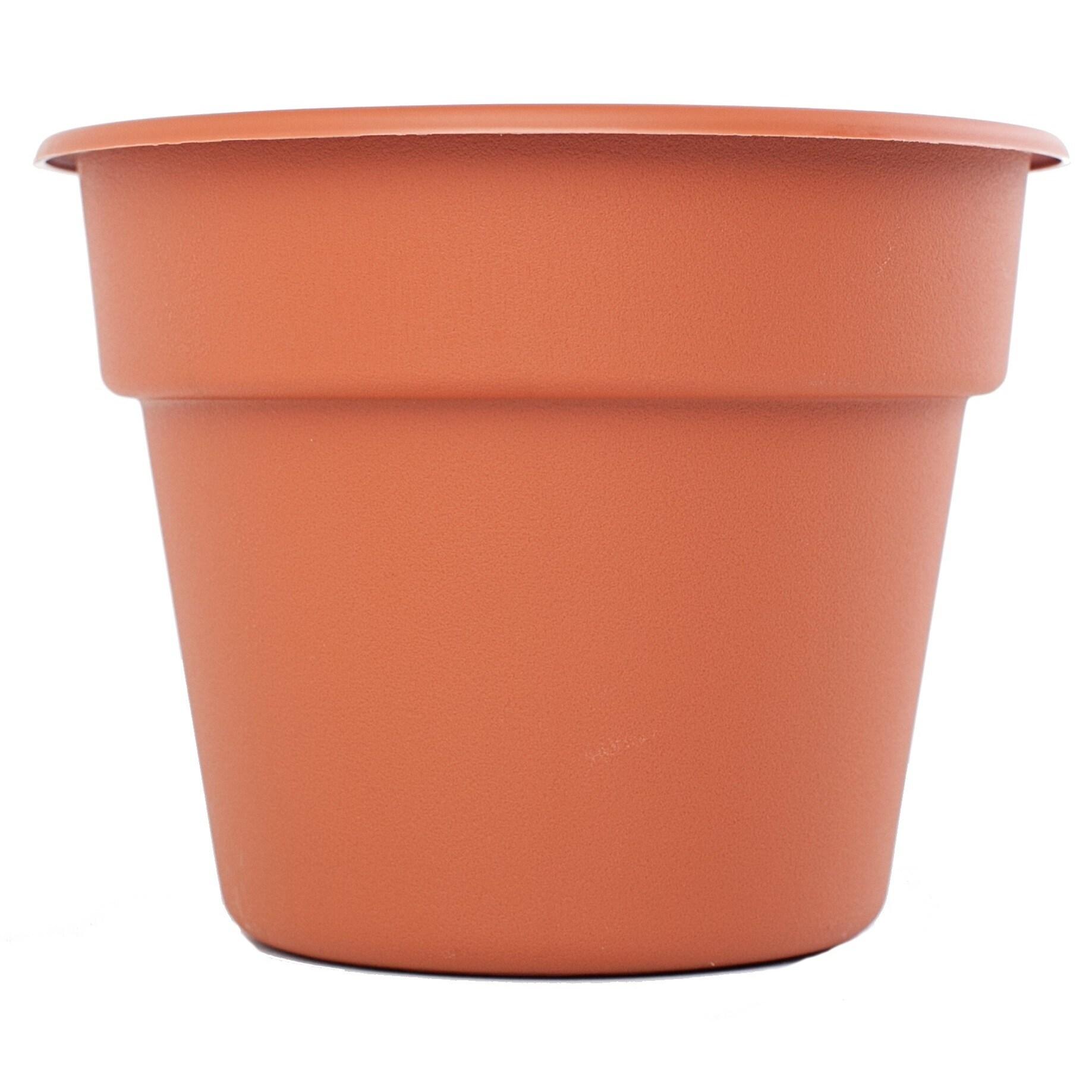 Bloem Terra Cotta Dura Cotta Planter (16), Orange (Plasti...