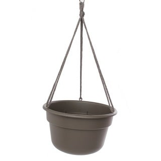 Bloem Peppercorn Dura Cotta Hanging Basket