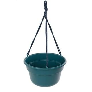 Bloem Turbulent Dura Cotta Hanging Basket