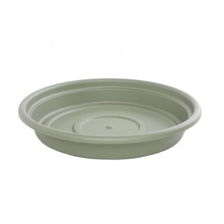 Bloem Dura Cotta Living Green Saucer